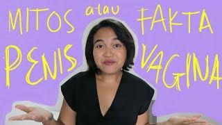 Download Video UKURAN PENIS ORANG ASIA KECIL?! | MITOS ATAU FAKTA MP3 3GP MP4