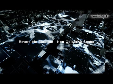Reversible Rotation - Non-Objective Space