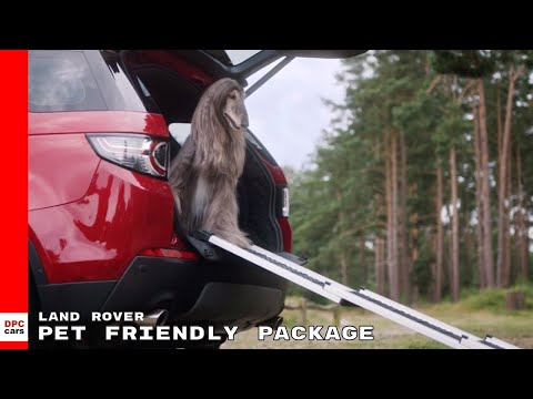 land-rover-dog-&-pet-friendly-package