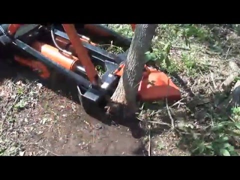 Marshall Tree Saw | Home of the best heavy-duty tree remover!