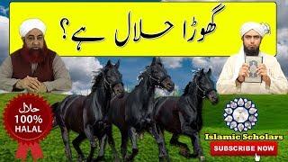 Kya Ghora Halal Hai Aalim Ke BOL Engineer Muhammad Ali Mirza Vs Mufti Akmal | Reply to BOL TV