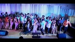 3 TUMEBARIKIWA by Healing Worship Team 2015