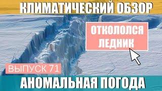 В Антарктиде откололся ледник.  Аномальная погода. Климатические изменения. Выпуск 71