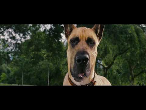Arcadium Cine: Trailer de Marmaduke