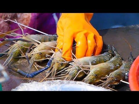 Taiwanese Street Food - LIVE GIANT PRAWNS Shrimp Seafood Balls Kaohsiung Taiwan