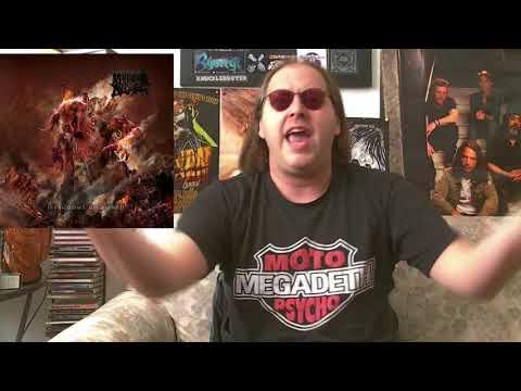 Morbid Angel - KINGDOMS DISDAINED Album Review