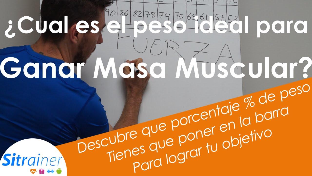 Cual es el porcentaje de masa muscular ideal