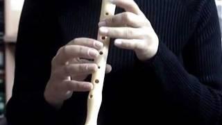 O Tannenbaum / Oh Christmas Tree (flauta 1)