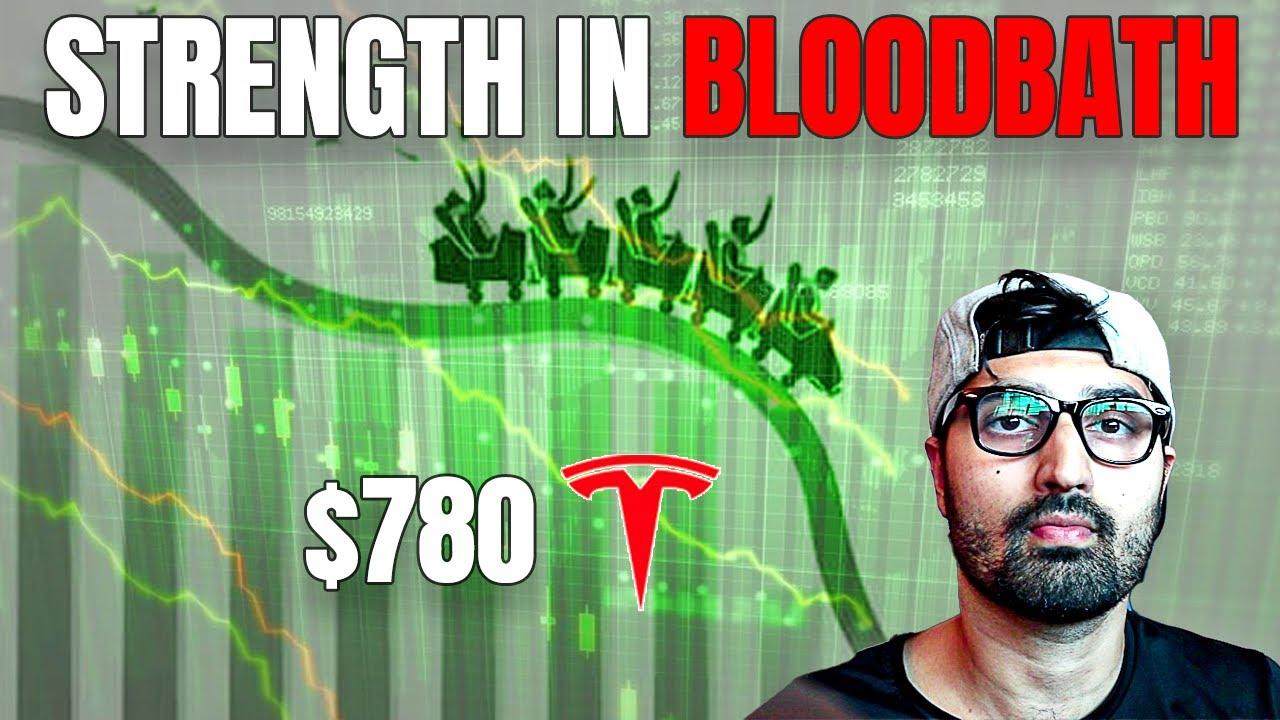 Download Tesla Stock Shows Massive Strength In Macro Bloodbath (What's Next?)