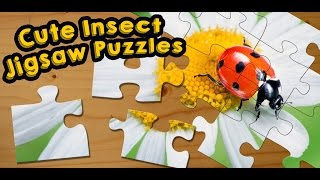 Bugs & Insects Jigsaw Puzzle Game for Kids - App Gameplay Video