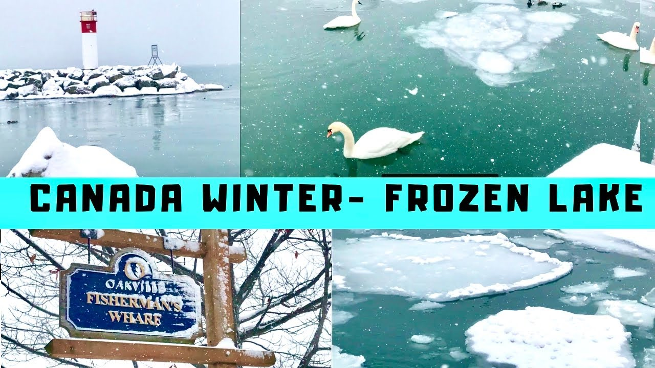 Canada Winter travel vlog | Frozen Lake Ontario| Winter 2019 Outing vlog | Weekend Tamil vlog