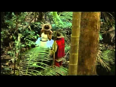 Katie & Peter in the jungle  I'm a Celebrity