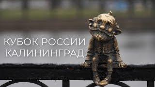 """Тридевятое Царство! """"Динамо-Казань"""" отправился за кубком в Калининград!"""