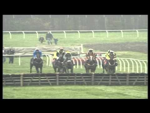 Sporty Race Nights Horse JUMP Race