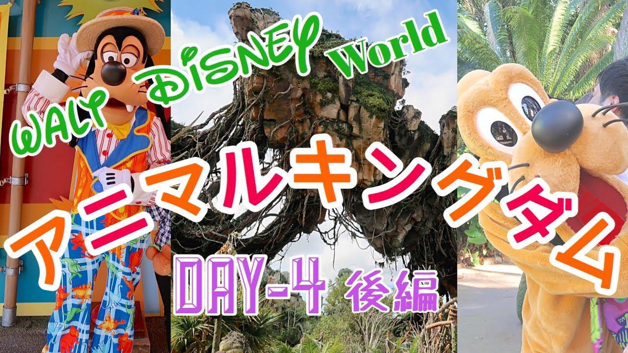 Download フロリダ ディズニーワールド【WDW旅行記 2020 Vlog】DAY4 アニマルキングダム後編
