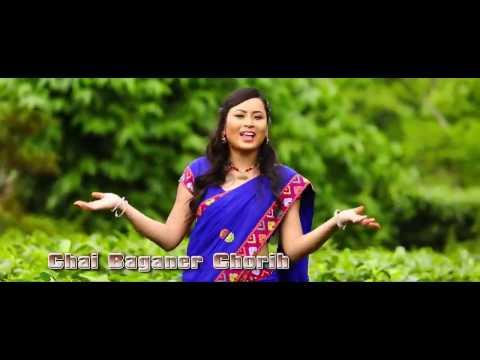 Chai Baganer Chori Re Tui | Latest Assamese Baganiya Romantic Song | Assam Adivasi Videos