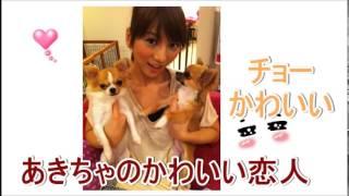 AKB48 高城亜樹 あきちゃが夜必ず一緒にねるほど大好きな 愛犬チワワに...