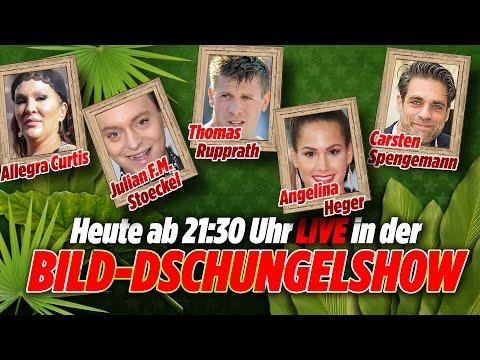 Allegra Curtis, Angelina Heger, Julian F.M. Stoeckel, Spengemann - BILD-Dschungel-Show 22.01.17 #10