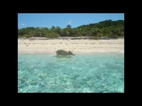 Big Major Cay