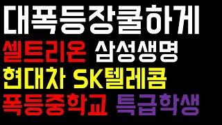 현대차 삼성생명 카카오 셀트리온 SK텔레콤 LG화학 엄…