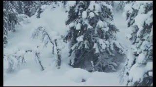 Тест-драйв Снегохода BoonDocker 3700 600E-TEC. Квадроциклы и снегоходы. Выпуск 31(Смотрите в этом выпуске: Тест-драйв Снегохода BoonDocker 3700 600E-TEC Программа квадроциклы и снегоходы - первый..., 2015-12-20T18:38:05.000Z)
