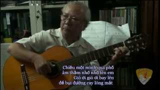 CHIỀU MỘT MÌNH QUA PHỐ (Trịnh Công Sơn)