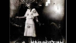 Heaven Shall Burn - Architects of the Apocalypse