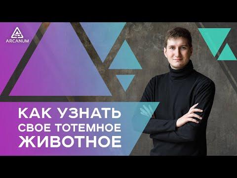 Как узнать своё тотемное животное / Роман Сафронов / Арканум-ТВ / Серия 204