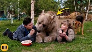 10 animais de ESTIMAÇÃO mais diferentes do mundo