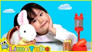 라임이의 깡총깡총 뛰는 아기토끼 키우기 애완동물 기르기 장난감 놀이 Lime & Toys 라임튜브