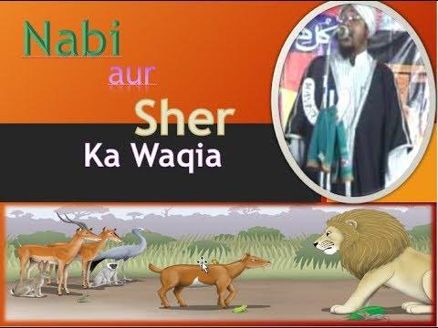 Allama Qari Md Sakhawat Hussain Barkati speaking about Nabi aur Sher ka Waqia
