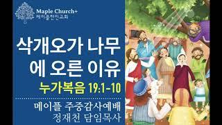 주중감사#25 삭개오가 나무에 오른 이유 (누가복음 19:1-10)   정재천 담임목사   말씀이 살아있는 Maple Church