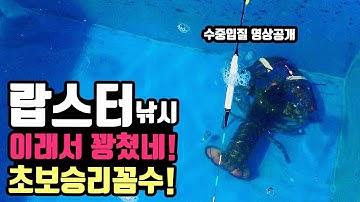 랍스터낚시 초보도 랍스타낚시 잘잡는 꼼수! 랍스타낚시 대부도 시화방조제 유터 유료바다낚시터 랍스터낚시 어심바다낚시터 랍스터하우스 korea lobster houese fishing