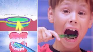 Динозубрик учит правильно чистить зубы!
