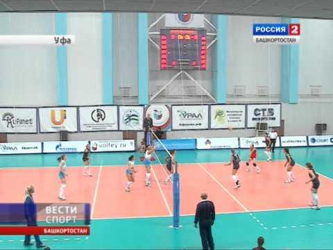 Чемпионат Украины по волейболу
