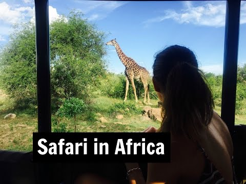 Travel Diary - Safari in South Africa