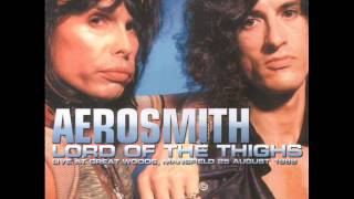 Aerosmith Hangman Jury Mansfield 1988
