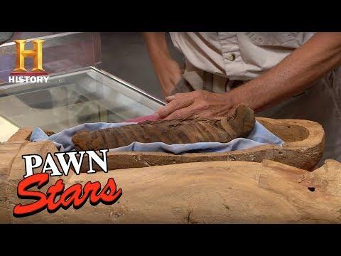 Pawn Stars: Falcon Mummy