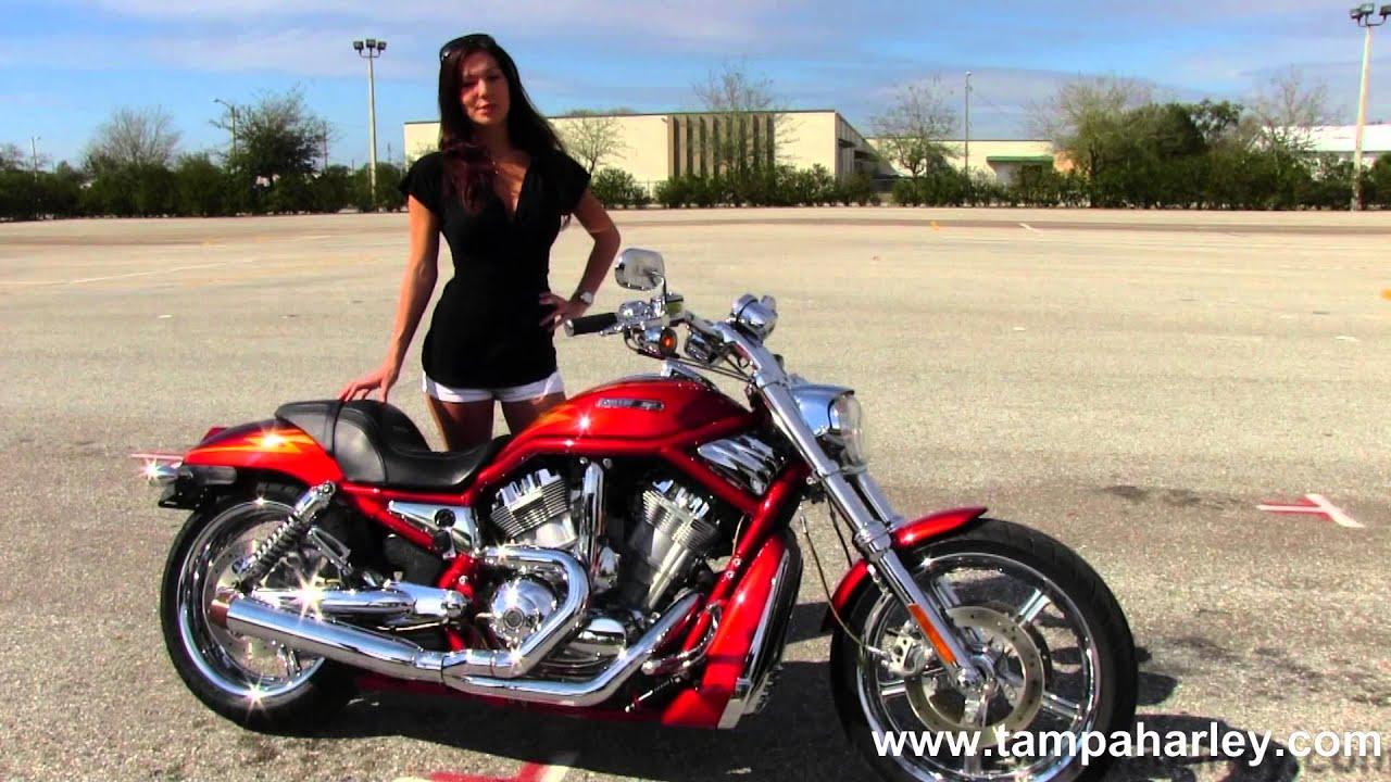 Harley Davidson V Rod Screamin Eagle For Sale