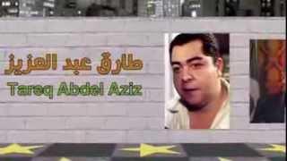 الممثل المصري طارق عبد العزيز