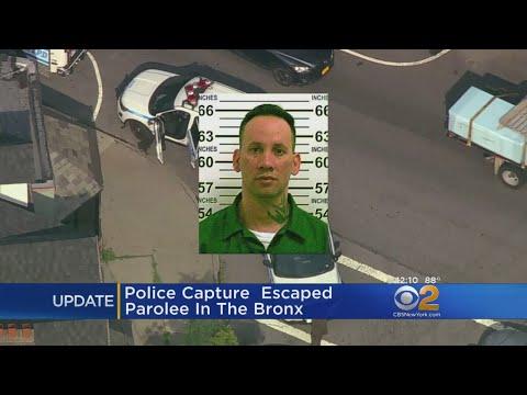 Police: Escaped Staten Island Parolee Captured In The Bronx