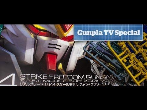 Gunpla TV - Special Edition - 1/144 RG ZGMF-X20A Strike Freedom Gundam - Hlj