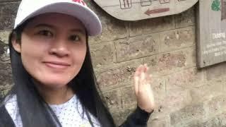 ท่องเที่ยว Làng Cỗ Sơn Tây (ທ່ອງທ່ຽວ SƠN TÂY) VN