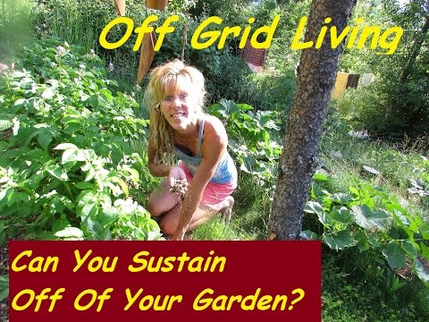 Off Grid Living: HOW HARD IS OFF GRID LIFE? CAN YOU LIVE OFF A GARDEN ONLY?