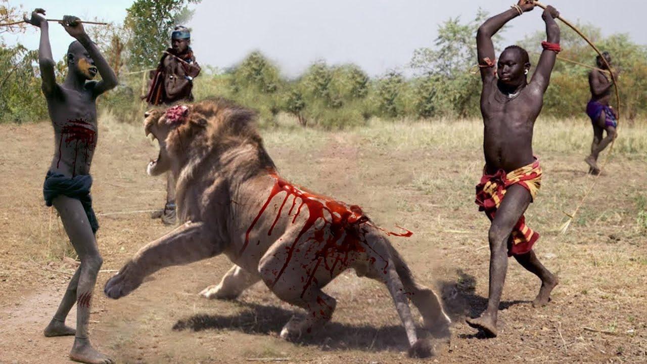 আফ্রিকার সবচেয়ে ভয়ঙ্কর ১০ টি শিকারি পশু | দেখলে চমকে যাবেন Greatest Predators Of The African Wild