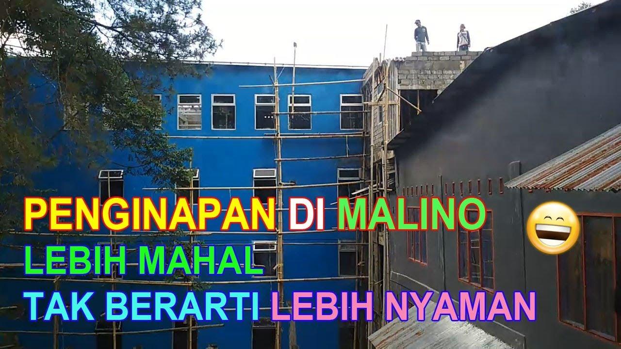 Villa Murah Di Malino