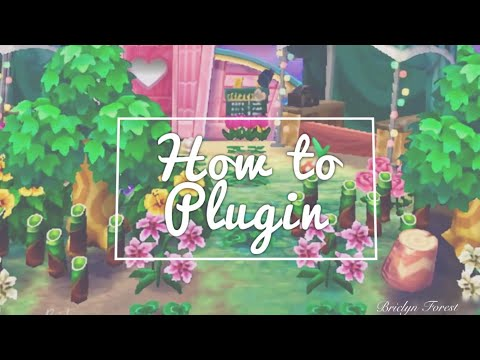 How to use rydogs plugin + online seeder ♡ / dream town