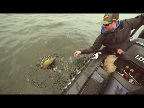 Padde-Tail Swimbaits for Giant Mille Lacs Smallmouth Bass!