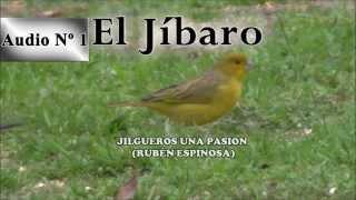 Jilgueros una pasion   CD del Jibaro