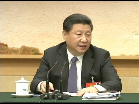 Chinese President Xi attends Panel Meeting of NPC Deputies from Shanghai